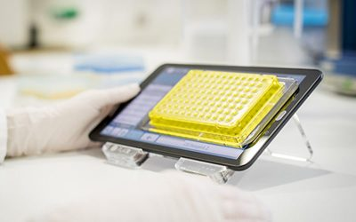 Understanding qPCR efficiency and why it can exceed 100%